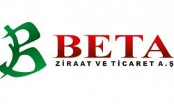 Beta Ziraat Pancar Tohumu Çeşitleri
