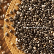 chia tohumu tarifleri