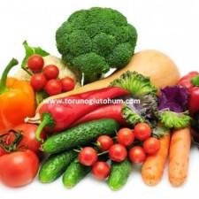 sebze tohumu fiyatları