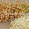 Kinoa Tohumu Fiyatları