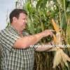 mısır verimi nasıl arttırılır