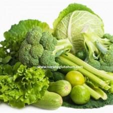 sebze tohumu çeşitleri