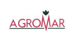Agromar Ayçiçeği Tohumu Çeşitleri