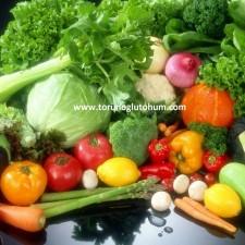 sertifikalı sebze tohumları
