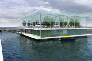 Dünyanın ilk 'yüzen çiftliği' Hollanda'da kuruluyor