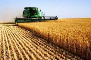 Çiftçiye bayram hediyesi ithalat kararnamesi