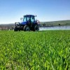 Tarım Ürünleri İthalatında Kontenjanlar Belli Oldu