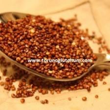 kinoa tohumu tarımı