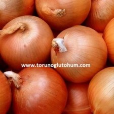 agrotan soğan tohumu