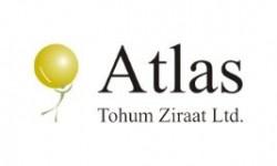 Atlas Tohum Soya Fasulyesi Tohumu Çeşitleri