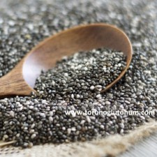 chia tohumu fiyatları