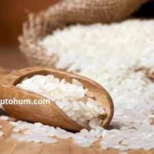 pirinç hangi ayda hasat edilir